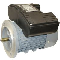 YL Series Induction Motor