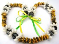 kukui nut with shell necklace