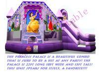 Inflatable Disney Castle
