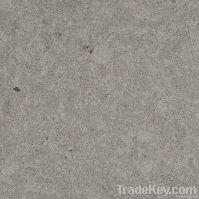 Light Grey Quartz Stone QZ1809
