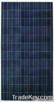 156 series polycrystalline solar module