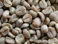 Arabica coffee beans from
