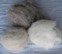 cashmere ;wool  fibre