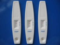 FABP (Fatty Acid Binding Protein) Cardiac Infarction Rapid Test