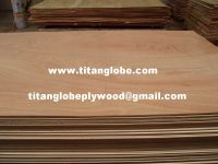 Thin Plywood