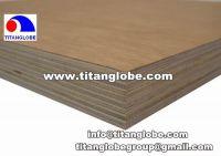 Container Floor