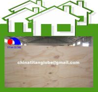 Pine Plywood Packing Plywood 9mm Plywood - Titan Globe
