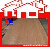 Cheap Natural Hardwood Veneer, Cheap Natural Veneer, Cheap Face Veneer - Titan Globe