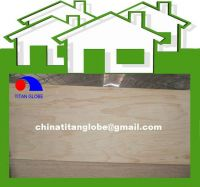 7mm Packing C/D Grade Radiata Pine Plywood - Titan Globe