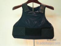 Body Armor (underwear)