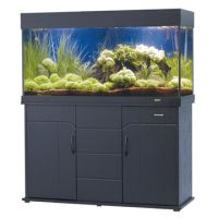 Aquarium and accessories