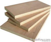 plywood sheet