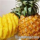 Pineapple Extract Powder