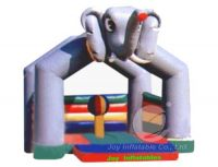 Inflatable Bouncer T4-22