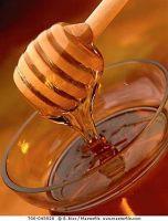 Bee Honey & Derivatives