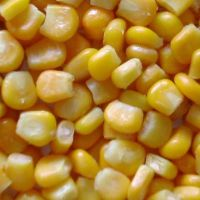 canned sweet corn kernel