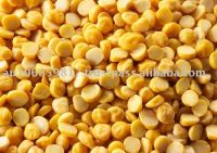 Chana dal Split Desi Chickpea Bengal Gram Yellow Gram Gram Chana Pois or Chicke Shihu