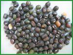 Black Mung Beans