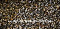 Australia organic buckwheat grain