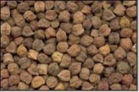 chickpeas, Desi Chick Peas, kabuli chickpeas, white chickpeas, white channa, brown channa,