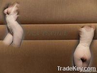 Power Net & Mesh Fabric for Shape-Wear