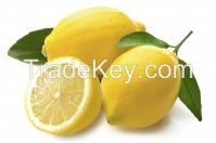 Fresh Grade A Lemon