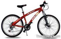 MTB/mountain bicycle