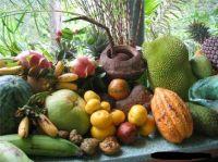 Tropical Fruits Pulp Purees