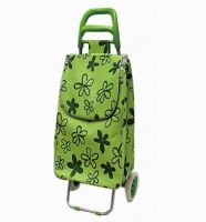 Foldable 600D Shopping Trolley C