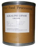 Lipase Bakery Enzymes Food Enzymes for Bread improver and baked good production