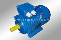 IE1 Standard Efficiency Three Phase Motor
