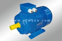 IE2 High Efficiency Three Phase Induction Motors