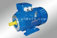 IE1 Standard Efficiency Three Phase AC Motors