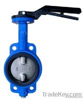 Wafer/Lug type Butterfly Valve