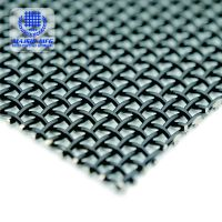 Top quality SS 316 Security Screen