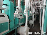 Turnkey Flour Mill (Large)