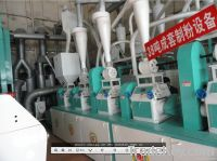 Small Scale Flour Mills