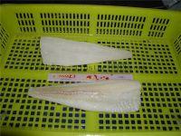 Atlantic cod fillets, loins, portions, lightly salted