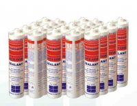 Anti Mildew Sealant