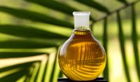 Palm Shortening Oil