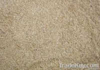 Seasand and River sand for reclaimation - Cambodia Origin