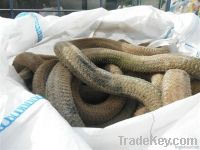 PP rope scrap from collecting harbour