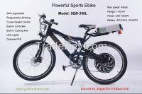 CE approved electric bike 1000W 48V
