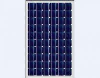 PV  Mono & Poly Solar Module