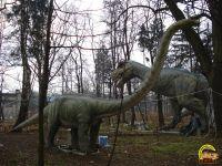 Amusement Park Elephants