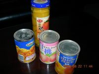 Canned Fruit in Syrup, Canned Food