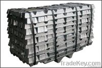 High purity Lead ingots ( HOT SELL )