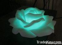 Electronic Lotus