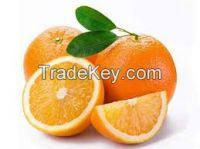 oranges ( fresh or dried )