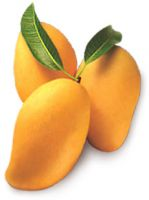 selling mango at very cheap price